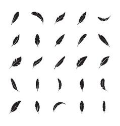 bird feathers glyph icon vector image