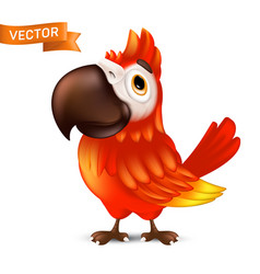 cute ara parrot with big beak cartoon tropical vector image