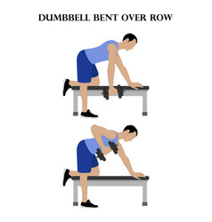 Dumbbell bent over row exercise strength workout vector