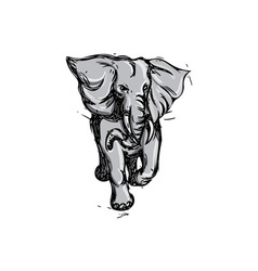 Elephant rampaging isolated drawing vector
