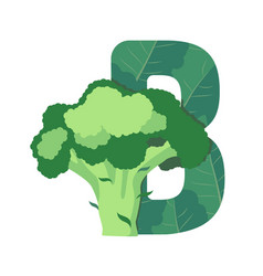 Letter b with green leaves and broccoli vector