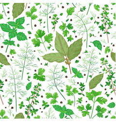 Pattern with flavoring herbs vector
