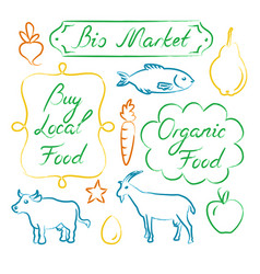 set of eco food lettering and hand drawn icons vector image