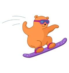 Teddy-bear on a snowboard vector