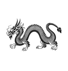 Tradition asian dragon vector