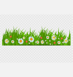 brighgrass and flowers border greeting card vector image