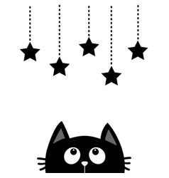 black cat looking up to hanging stars dash line vector image