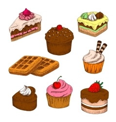 Colored sketches of cakes cupcakes and waffles vector image