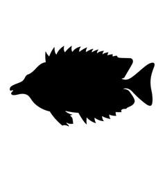 foxface rabbitfish vector image
