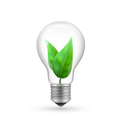 realistic eco light bulb isolated on white vector image