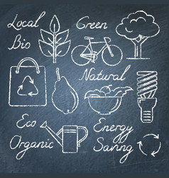 set of eco icons and lettering on chalkboard vector image