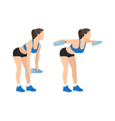 Woman doing bent over water bottle flies exercise vector