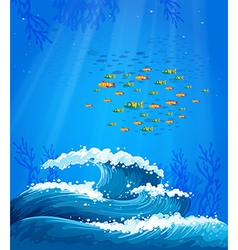 A school of fish and the waves vector image