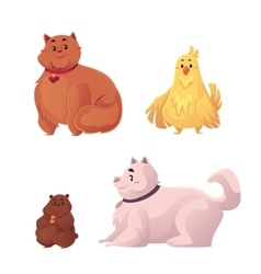 Fat chubby cat dog chicken and hamster vector image