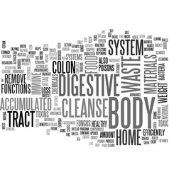 benefits of the home cleanse text word cloud vector image