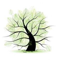 big old tree green leaf vector image