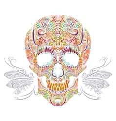Color decorative Skull vector image