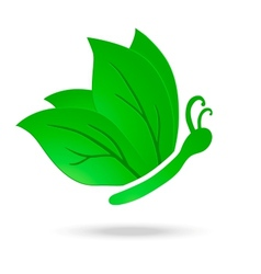 Eco Butterfly vector image