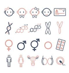 Gender icon set vector
