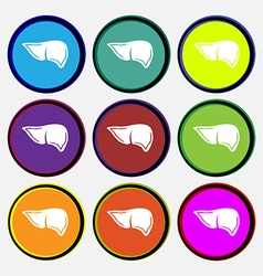 Liver icon sign Nine multi colored round buttons vector image