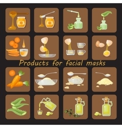 Products for homemade facial mask vector image