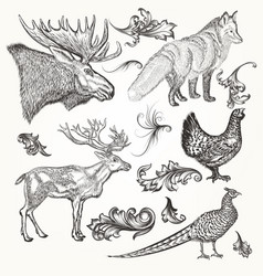 set of detailed animals and flourishes for design vector image