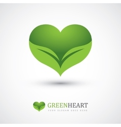 Two leaves in heart shape vector image