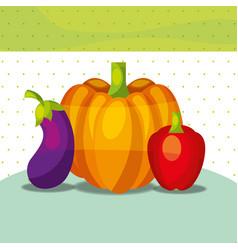 vegetables fresh organic healthy pepper pumpkin vector image
