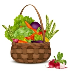 Vegetables in basket vector image
