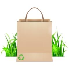 Eco Shopping Bag vector image vector image