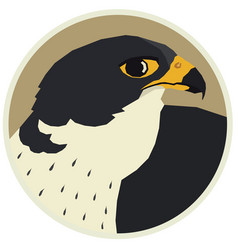 A peregrine falcon in round frame vector