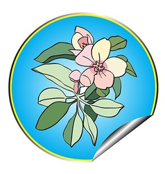 apple flower sticker blue vector image