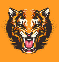 Colorful tiger face vector