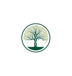 Dna tree logo icon vector