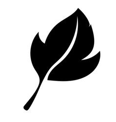 leaf black silhouette icon vector image