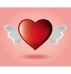 Red heart with wings pink backgraound vector