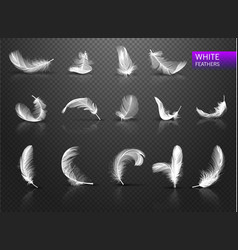 set of isolated falling white fluffy twirled vector image
