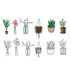 Set of pot plants flowers in vase colorful vector