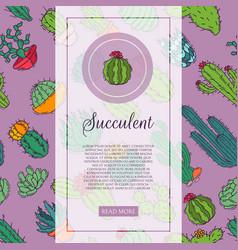 succulents decorative cacti green plants vector image