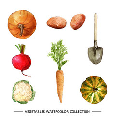 Vegetable collection design with watercolor vector
