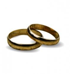 3d wedding rings vector