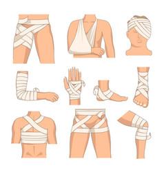 bandage human body injury bandaging body parts vector image