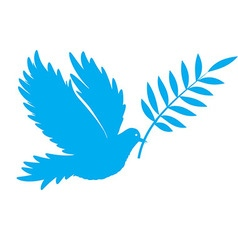 bird dove of peace vector image