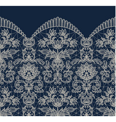 blue lace border background vector image