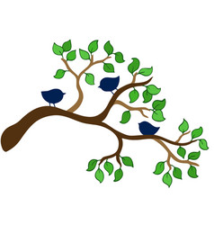branch with three small birds vector image