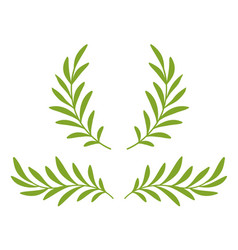 green olive branches with leaves and wreath vector image