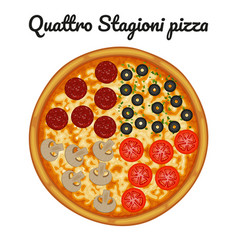 Quattro stagioni pizza with pepperoni olives vector