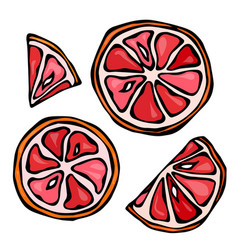 Set slices of grapefruit isolated on white vector