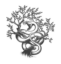 Snake on a tree vector