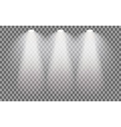 Stage illuminated spotlight vector image